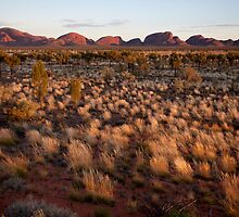 Kata Tjuta and the Moment by Steven Pearce