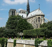 Notre Dame on the Seine by Sheri Greenberg