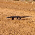 Why did the lizard cross the road by georgieboy98