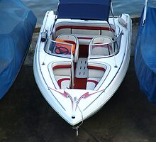 Artificial Face - Speedboat by Dentanarts