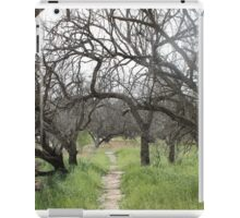 Tree Path iPad Case/Skin