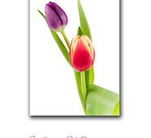 Mothers day card by Ashley Beolens