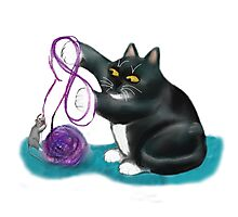 Mouse and Kitten Play with Purple Yarn Photographic Print