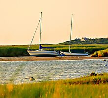 Tide Watch. by capecodart