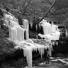 Huge B&W Icicles by LeeMascarello