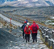 Peruvian Andes by juan jose Gabaldon