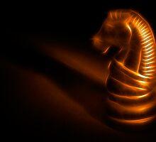 Trojan Gold by Nicolas Raymond