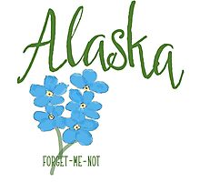 Alaska State Flower Forget Me Not Photographic Print