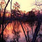 Red Sundown by DottieDees