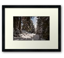 It's, oh, so quiet Framed Print