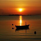 Orange Sunset. by khadhy