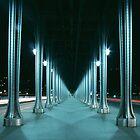 Bir-Hakeim bridge, Paris by 64iso