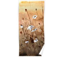 Meadow efflorescence Poster