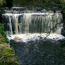 Waterfall at Danby-North Yorkshire by Trevor Kersley
