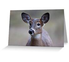 Deer girl...so forlorn - White-tailed Deer Greeting Card