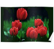Tiptoe through the Tulips Poster