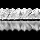 Salt Dunes In Black And White by Wayne  Pearson