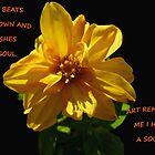MY SOUL by Spiritinme