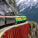 Breathtaking View from the White Pass Rail Train by Laurel Talabere