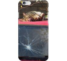 Rotten Shot !!! iPhone Case/Skin