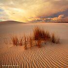 Desert Storm 2 by Hougaard Malan