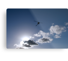 Silhouetted Flight Metal Print