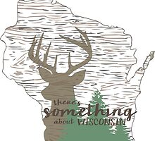 There's Something About Wisconsin by srboyles