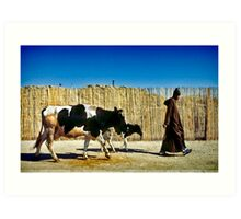 One Man Leading One and a Half Cows Art Print