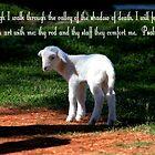 Psalm 23:4 by Darlene Lankford Honeycutt