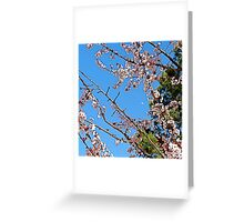 Plum Blossoms, Pine and Moon Greeting Card