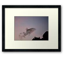 Starling Killer Whale Framed Print