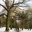 Winter Walk... by tonymm6491