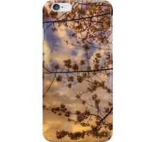Twilight in March iPhone Case/Skin