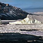 The Antarctic Coast by Carole-Anne