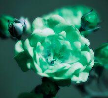 Green Ice by Donna Adamski