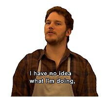 Andy Dwyer I Have No Idea What I'm Doing Photographic Print