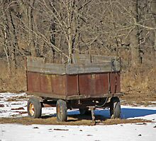 Retired Wagon by Linda Miller Gesualdo