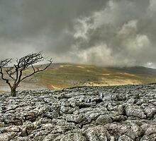 Gragareth from Twistleton Scar by Steve  Liptrot