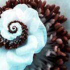 Droste Flower by Chris Summerville