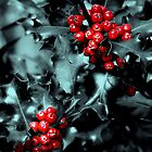 Red Berries by James Cole