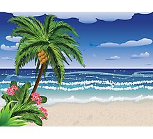 Palm tree on beach 2 Photographic Print