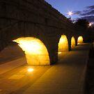 Aqueduct Silhouette by Rosalie M