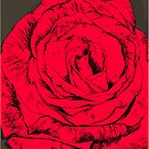 rose red by andrew j wrigley
