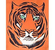 Orange Tiger Photographic Print