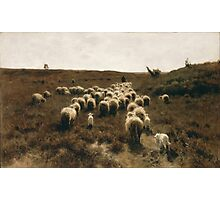 The Return of the Flock at Laren by Anton Mauve 1886-1887 Photographic Print