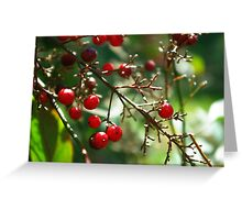 Trees that are slow to grow bear the best fruit. Greeting Card