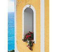 Flower in Window at Seaside Photographic Print