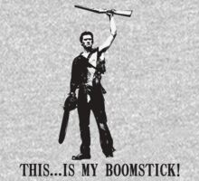 This...is my Boomstick! (Ash - Army of Darkness) by Chloe van Leeuwen