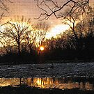Sunset  Over Grays Lake by Linda Miller Gesualdo