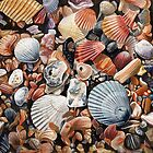 Original detailed watercolor illustration of an array of shells. by naffarts